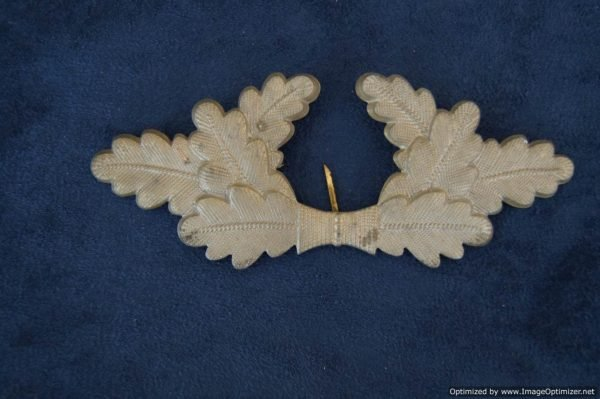 NSDAP Political Visor Wreath