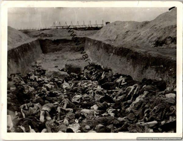 SGML-1376 4pc Belsen Concentration camp Photos