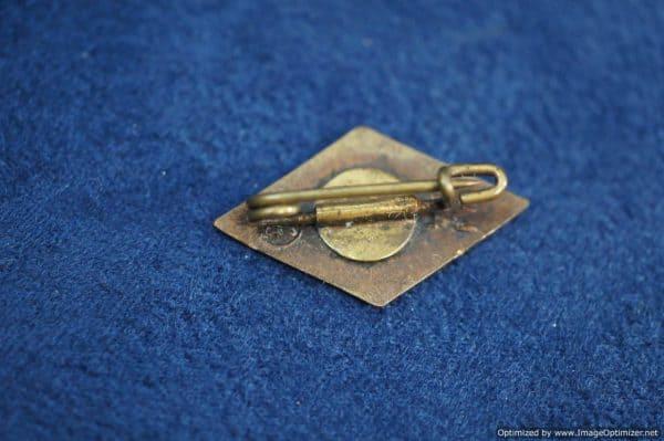 Hitler Youth Member Pin